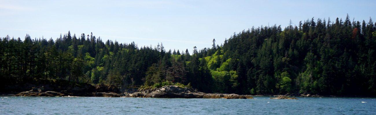 Third sail, chuckanut bay, and nailed it