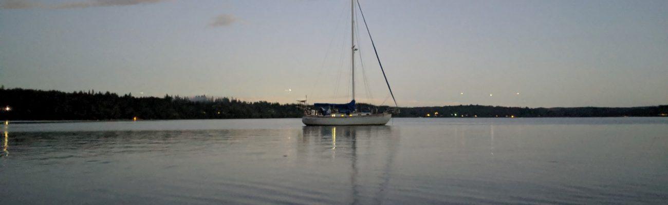 Lost speedo in Port Gamble